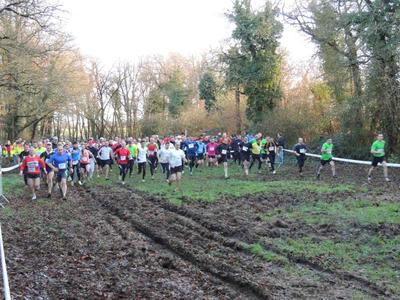 Cross 2014 - 11 copie